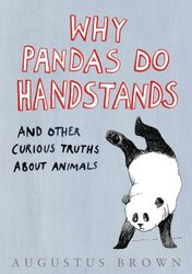 Why Pandas Do Handstands..., Hardcover, By: Augustus Brown