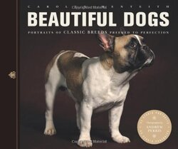 Beautiful Dogs: Portraits of Champion Breeds Preened to Perfection, Paperback Book, By: Carolyn Menteith