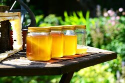 Qenwan Sider Honey, 1 Kg