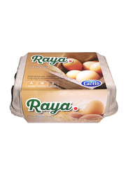 Lactio Raya Free Range Eggs, 6 Pieces