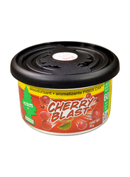 Little Trees Cherry Blast Organic Air Freshener, 30gm