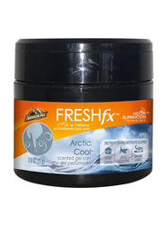 Armor All Gel Arctic Cool Air Freshener Can, 55gm