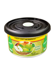 Little Trees Green Apple Organic Air Freshener, 30gm