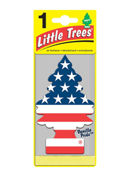 Little Trees Vanilla Pride Paper Air Freshener, Multicolor