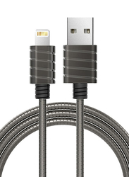 Iwalk 1-Meter Premium Certified Metallic Lightning Cable, 2.4A USB Type A Male to Lightning for Apple Devices, Steel Grey