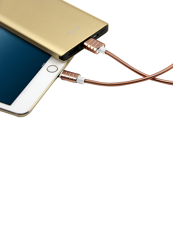 Iwalk 1-Meter Premium Certified Metallic Lightning Cable, 2.4A USB Type A Male to Lightning for Apple Devices, Gold
