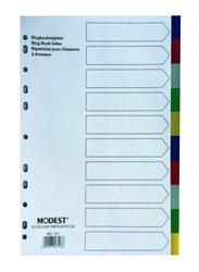 Modest PVC 10 Color Divider File Folder, White