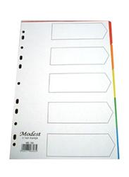 Modest PVC A4 5 Color Divider File Folder, Multicolor