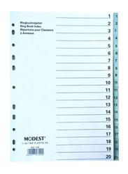Modest PVC 1-20 Divider File Folder, Grey