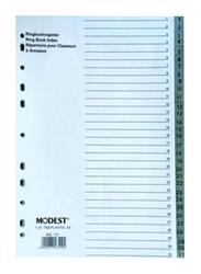 Modest PVC 1-31 Divider File Folder, Grey