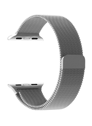 Promate Milous-42 Milanese Strap for Apple Watch 42mm/44mm Series 1/2/3/4, Premium Stainless-Steel Mesh with Secure Adjustable Magnetic Closure, Silver