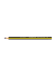Staedtler Jumbo Learner's #2 ST-119 Pencils Set, Triples Triangular Barrel, 4mm, 12 Pieces, Multicolor