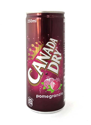 Canada Dry Pomegranate Soda, 250ml