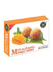 Banarasi Mango Mint, 12 Pieces, 72g