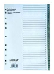 Modest PVC 1-20 Divider File Folder, Multicolor