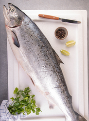 Salmon Fresh Fish Norway, 1 KG (Fillet with Skin)