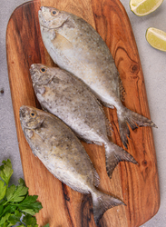 Rabbitfish (Safi) Fresh Fish UAE, 1/1.2 KG, 2 Pieces (Whole)