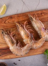 Shrimp Fresh 1KG, U/10 Pieces (Whole), Oman