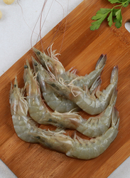 Shrimp Fresh Oman 1KG, 20/30 Pieces (Whole)