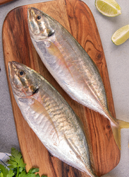 Trevally Gold Fresh Fish UAE, 1 KG Approx 2 Pieces (Cut Type: Curry Cut)