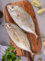 Orange-Spotted Trevally Fresh Fish UAE, 1 KG Approx 2 Pieces (Cleaning & Gutting)