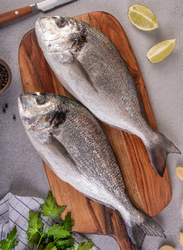 Sea Bream Fresh Fish UAE, 1 KG 2/3 Pieces (Whole)