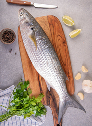 Grey Mullet Fresh Fish Large UAE, 1 KG 2/3 Pieces (Whole)