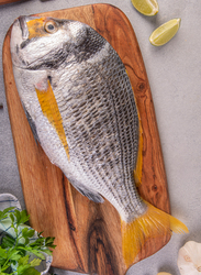 Two-Banded Porgy Fresh Fish UAE, 1-1.2 KG Approx 2 Pieces (Whole, Gutted)