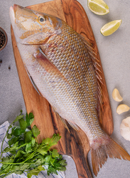Emperor (Shari) Fresh Fish UAE, 1/1.2 KG 1 Piece (Curry Cut)
