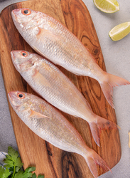 Delagoa Threadfin Bream (Sultan Ibrahim) Fresh Fish UAE, 1KG Approx 4 Pieces (Whole)