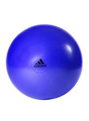 Adidas Anti-Burst Gymball, 55cm, Purple