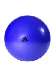 Adidas Anti-Burst Gymball, 65cm, Purple
