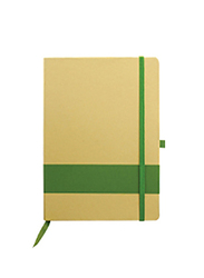 Silver Sword Eco Friendly Notebook with Stripe, Green