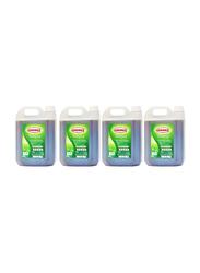 Chemex Antiseptic Disinfectant Liquid, 4 Pieces x 5 Liter