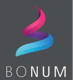 Bonum IT Solutions