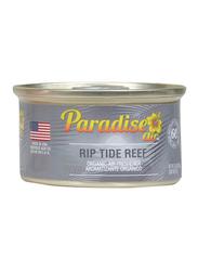 Paradise Air Ripe Tide Reef Organic Air Freshener, Grey