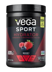 Vega Sport Hydrator, 142g, Berry