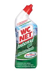 WC Net Intense Gel Mountain Fresh Toilet Cleaner, 750ml