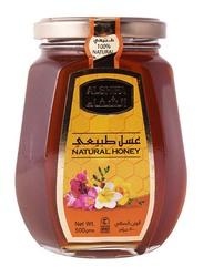 Al Shifa Natural Honey Squeeze, 500g