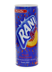Rani Float Peach Fruit Drink, 240ml