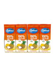 Rubicon Pineapple and Coconut Juice, 4 x 200ml