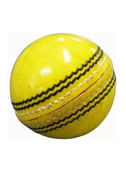 Indoor Cricket Ball, 20.32cm, Yellow