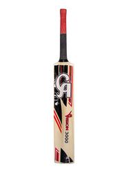 CA Vision 3000 Cricket Bat, Multicolor
