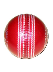 CA Cricket Ball, Large, Red