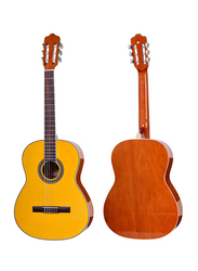 Steiner TR CG31-39 Classical Guitar, Rosewood Fingerboard, Yellow