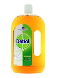 Dettol Anti Bacterial Antiseptic Disinfectant, 750ml