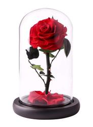 Eternal Handmade Glass Preserved Flowers, Red