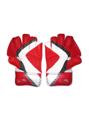 Sareen Sports Cricket Match Wicket Keeping Gloves, Multicolour