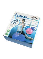 Mesuca I Care Gym Ball, 65cm, Purple