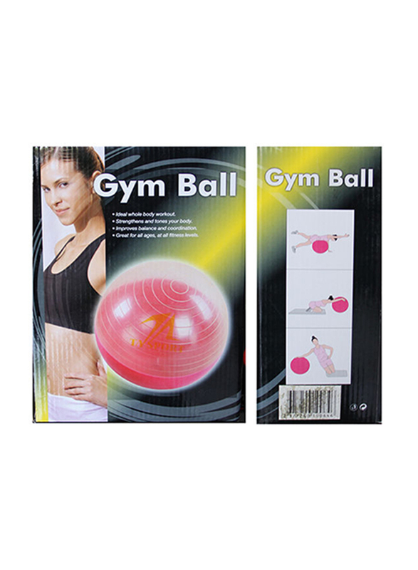 Gym Ball without Pump, Grey